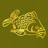 Carp-fishing-T-Shirt