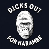 Dicks-Out-for-Harambe-Haram-be-Gorilla-T-Shirt