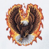 Flaming-Eagle-T-Shirt