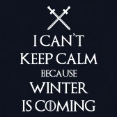 I-Cant-Keep-Calm-Winter-Is-coming-Fan-Parody-Funny-Top-T-Shirt