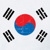 Retro-South-Korea-Flag-Vintage-Youth-Kids-T-Shirt