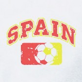Spain-Distressed-Football-T-Shirt