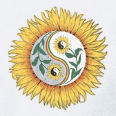 Sunflower-Women-T-Shirt