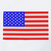 USA-Flag-T-Shirt