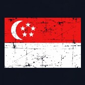 Vintage-Singapore-Flag-Youth-Kids-T-Shirt